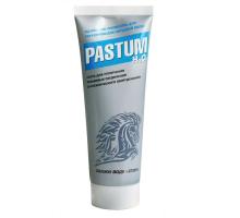 Паста уплотнительная PASTUM H2O 25гр