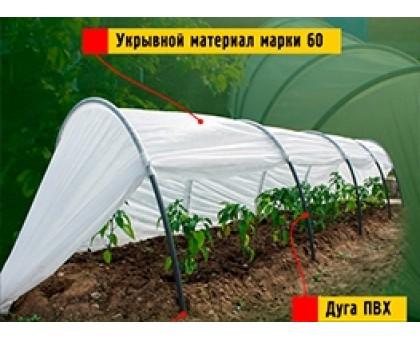 "Парник дачный СТАНДАРТ ""60"" 2 х 4м пластик"